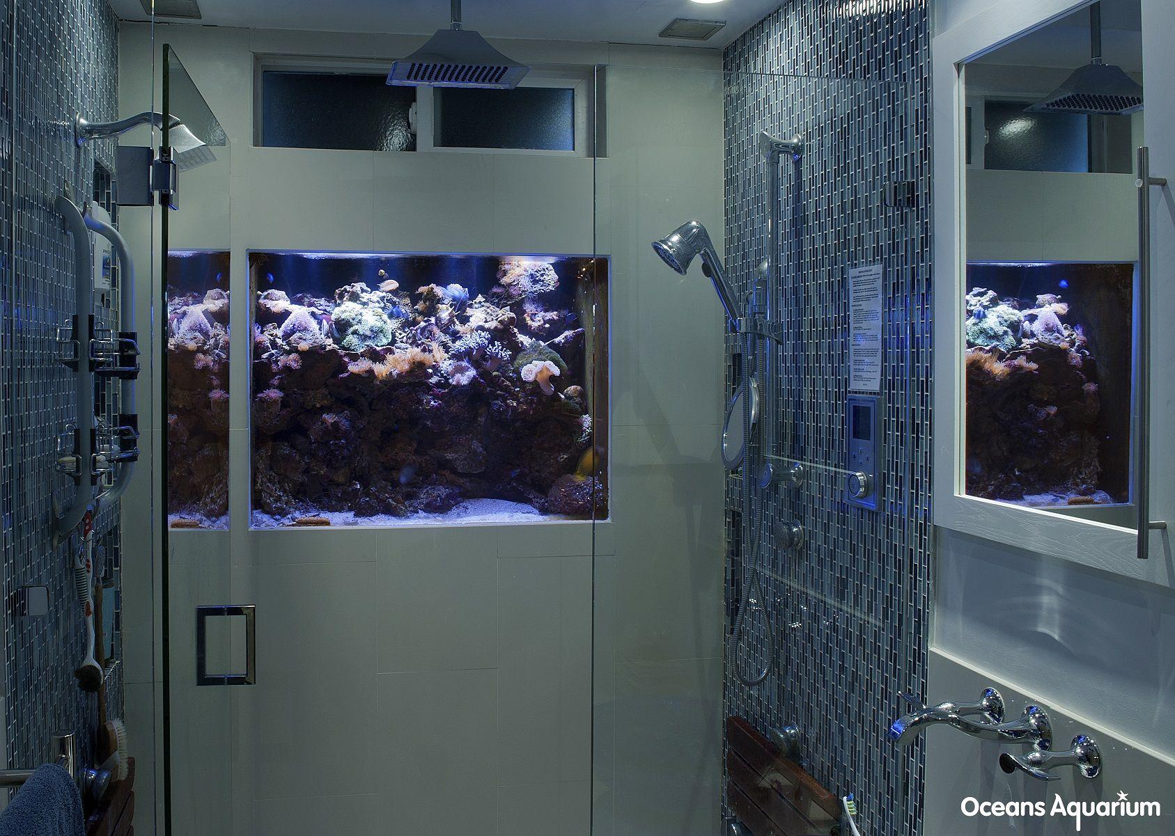A unique creation! 115 gallon IN-Wall Shower aquarium. Acrylic ...