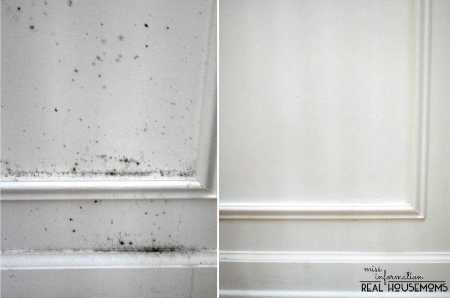 The secret to removing mold and keep it from coming back - Cleaning mold off bathroom walls ...