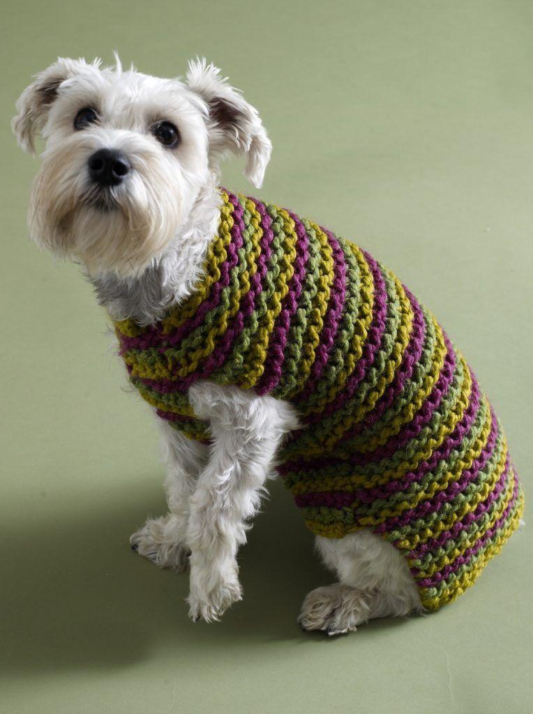 Cooldogsweatercrochetpatterneasykeepyourdogwarmwitha Amazing Crochet Dog Sweater Pattern Easy
