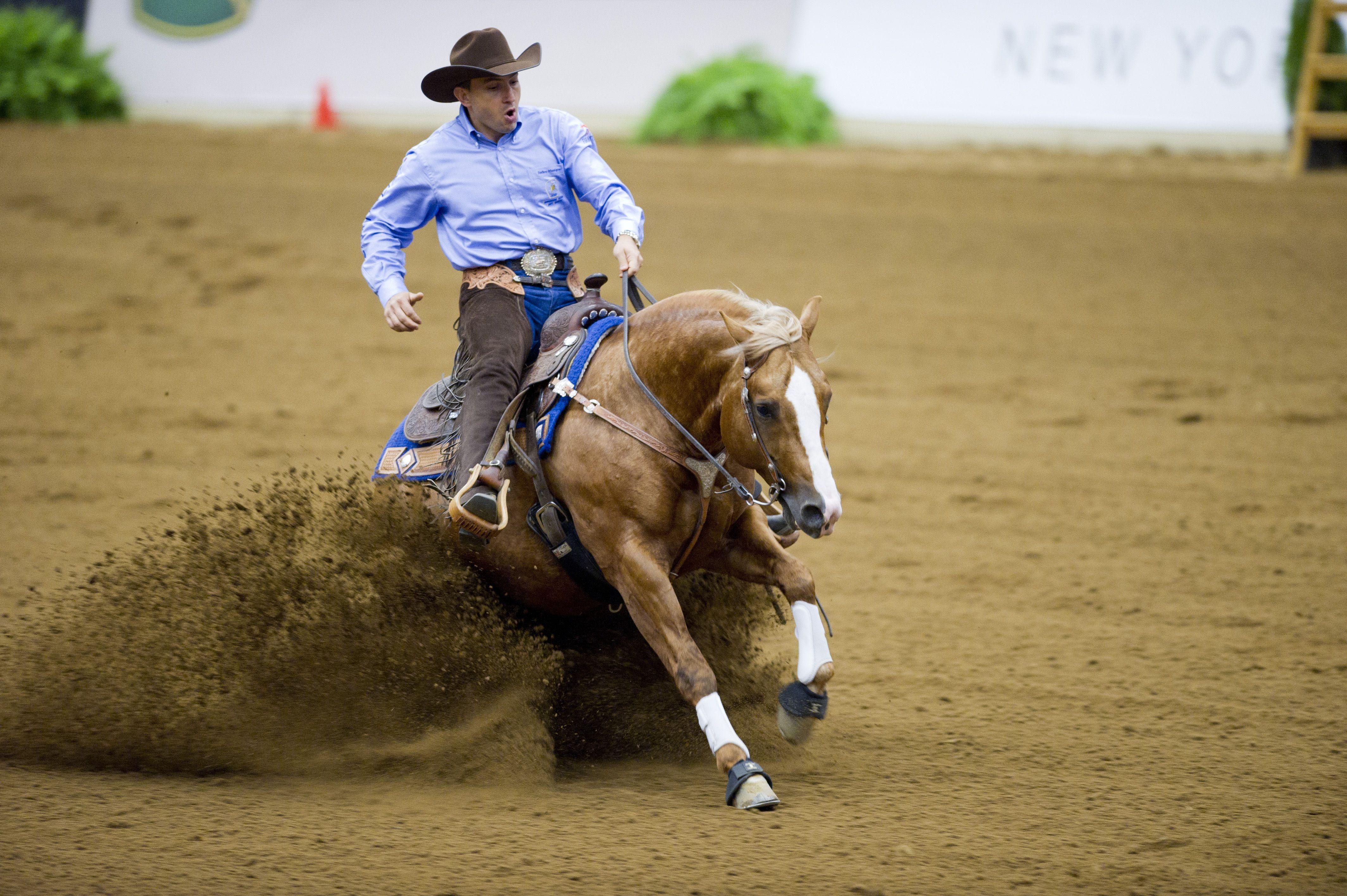 Reining. Copyright FEI / Kit Houghton Riding arena