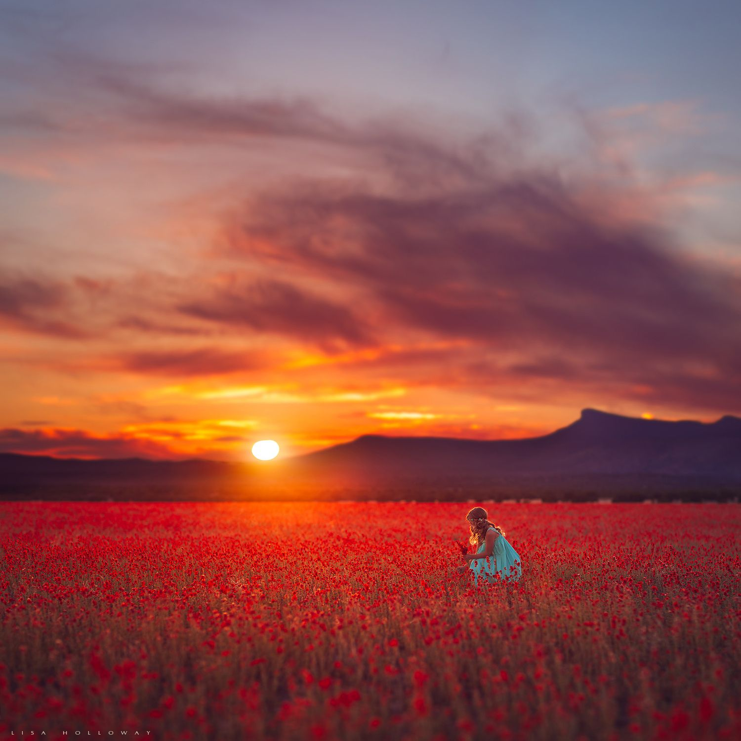 Field of Fire by Lisa Holloway - Photo 126013365 - 500px