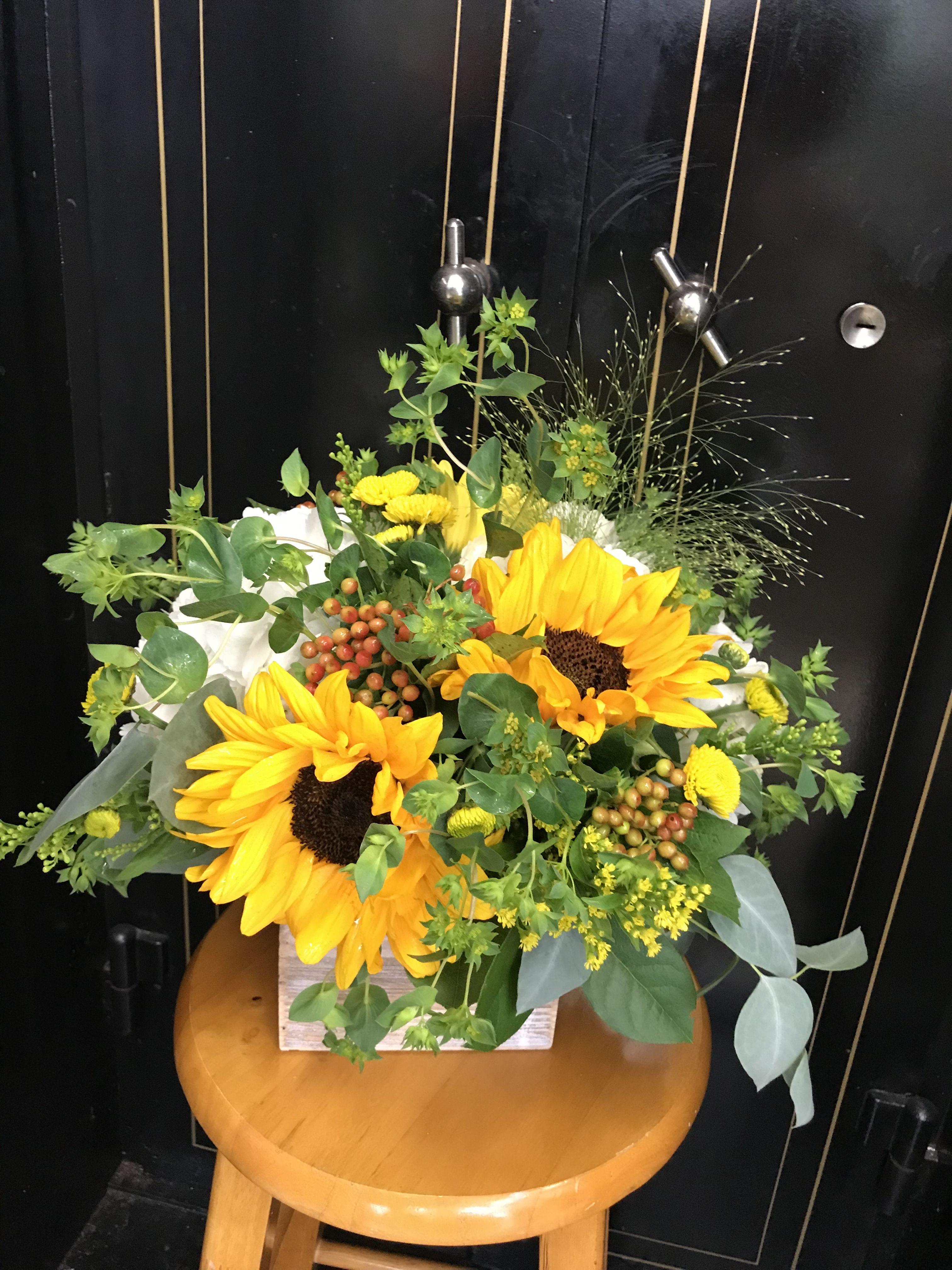 Sunflower Arrangement Sunflower Arrangements Fresh Flower Delivery Flower Gift