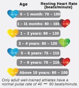 Best 25+ Normal heart rate ideas on Pinterest | Pulse rate ...