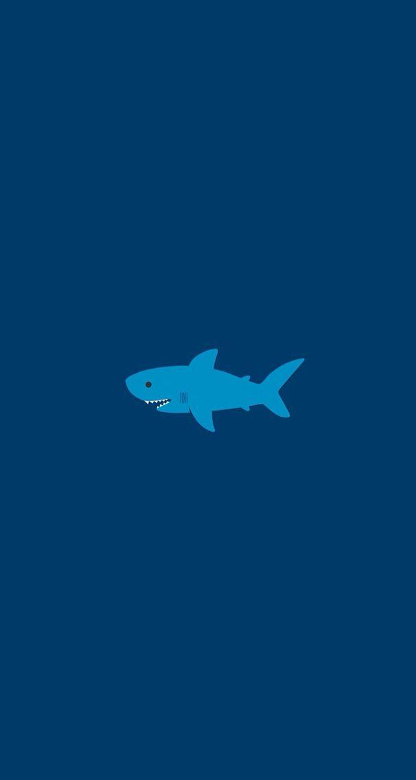 shark wallpaper Cuteeee. Pinterest Shark