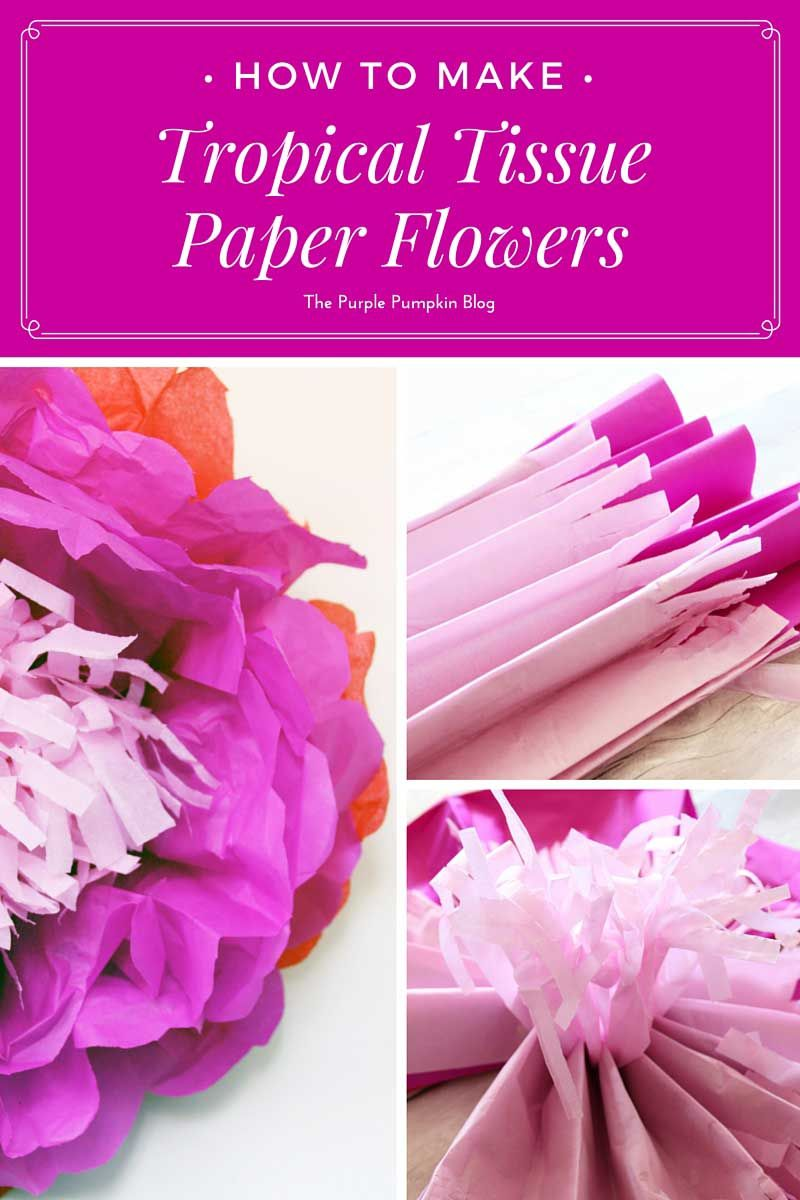 How To Make Tropical Tissue Paper Flowers Pinterest