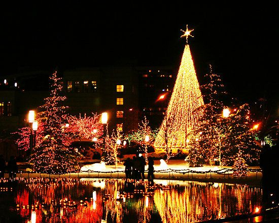 Salt Lake City Utah With Images Christmas Lights Christmas Town Christmas Time Is Here