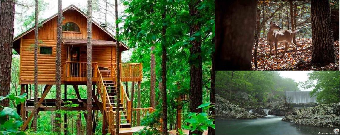 Lake Of The Ozarks Missouri Tree House Cabins Treehouse Cottages Luxury Tree Houses Treehouse Cabins