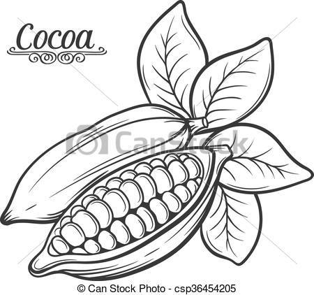 Resultado de imagen para cacao dibujo | stencil cacao cafe y ...