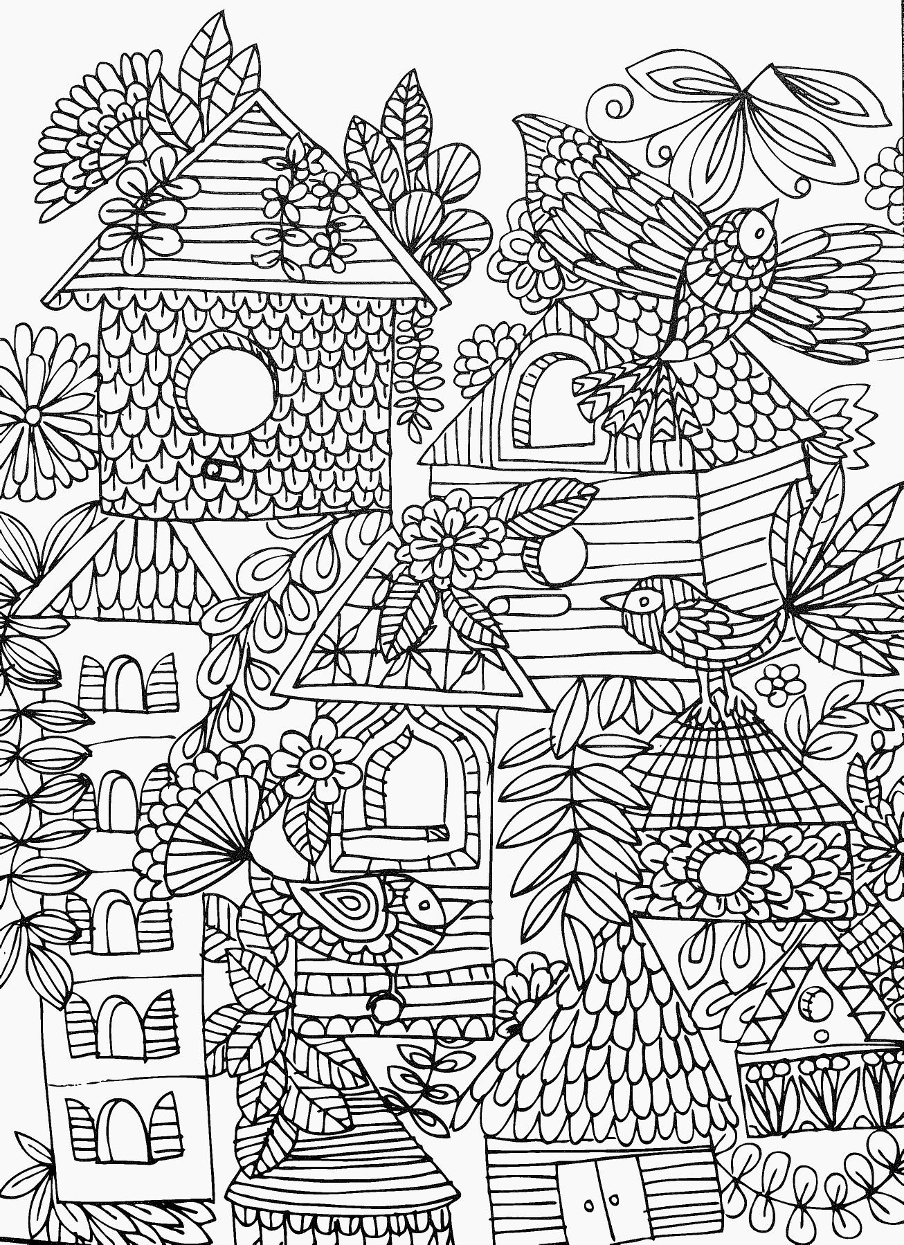 Fun & funky birds & birdhouses adult coloring page | abstract ...