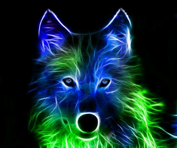 Green And Blue Electric Wolf Wolf Wallpaper Wolf Photos Wolf Pictures