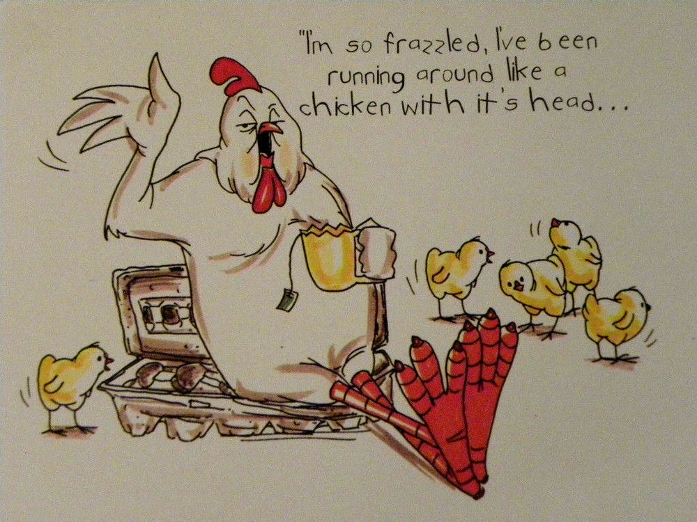 16+ Chicken run coloring pages ideas in 2021