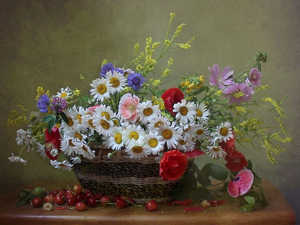 6da0cae0cd2fb Скачать обои стол, натюрморт, ромашки, цветы полевые, маки, вишня, корзина,  васильки, раздел цветы в разрешении 1024x768