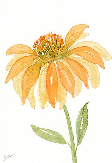 Coneflower ACEO nº 99