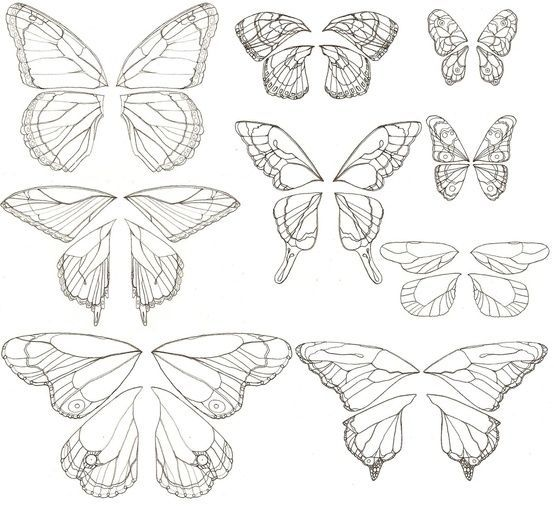 Photo of Butterfly drawings #half_butterfly_tattoo – Butterfly drawings #h …