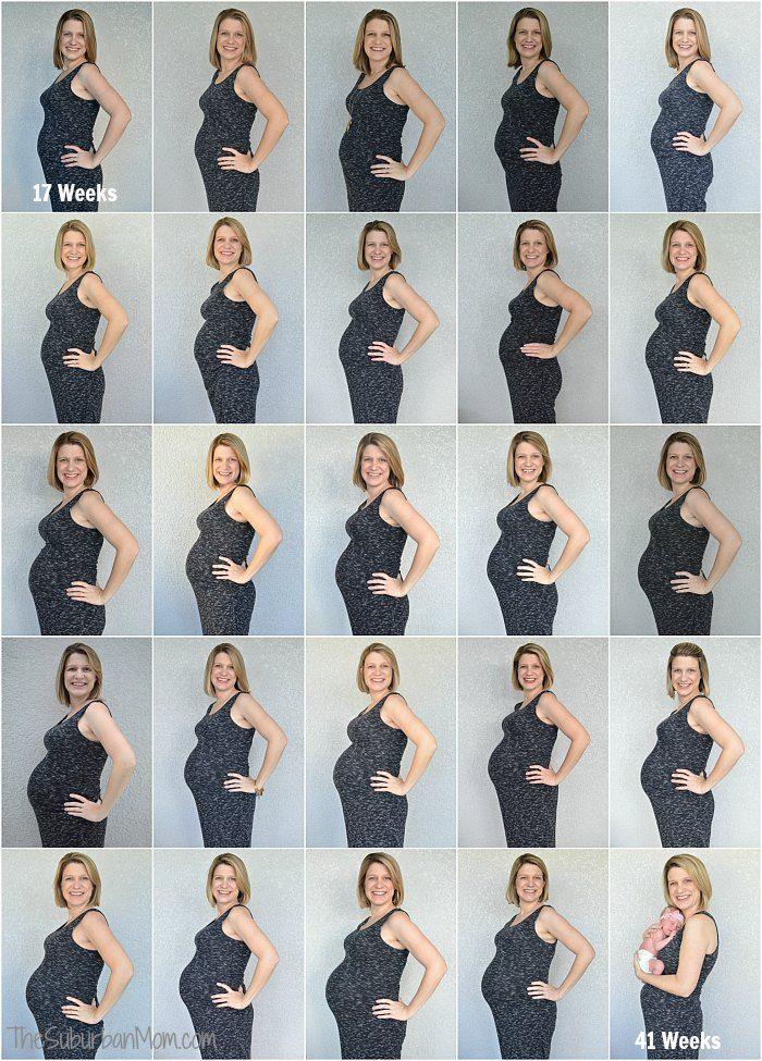 Pregnancy Belly Week By Week Diagram