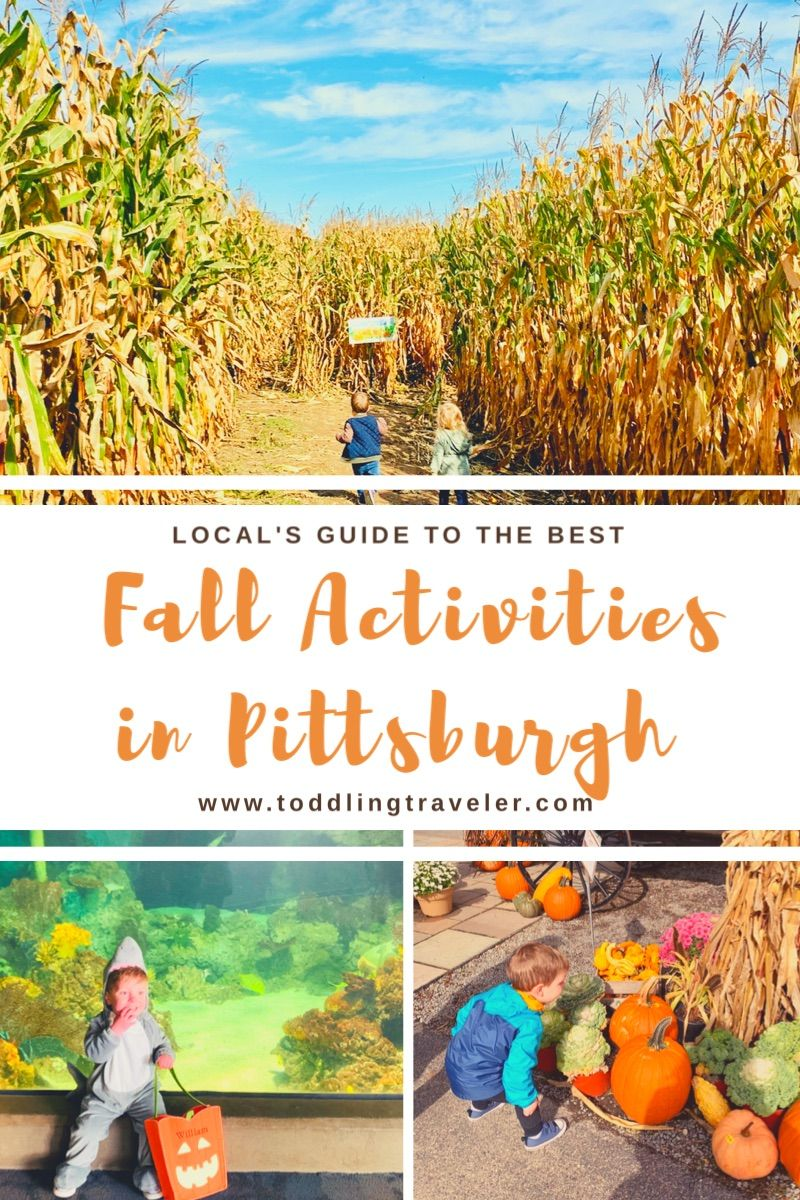 Pin On Things To Do In Pittsburgh