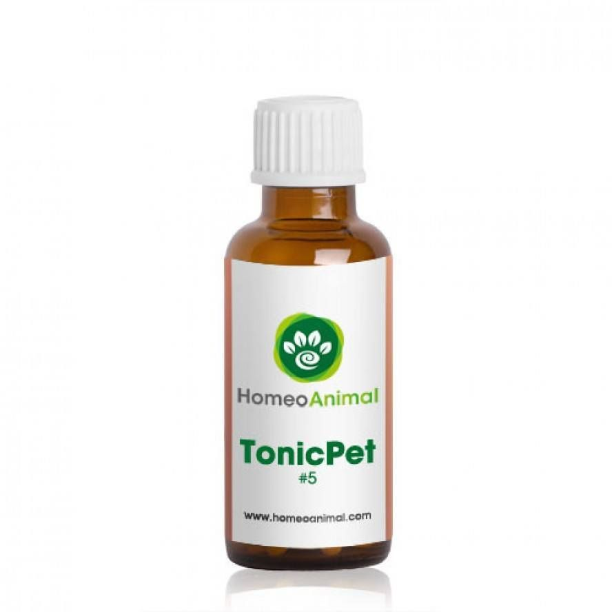 Tonicpet 5 Natural Headache Remedies Homeopathic Remedies Water Retention Remedies