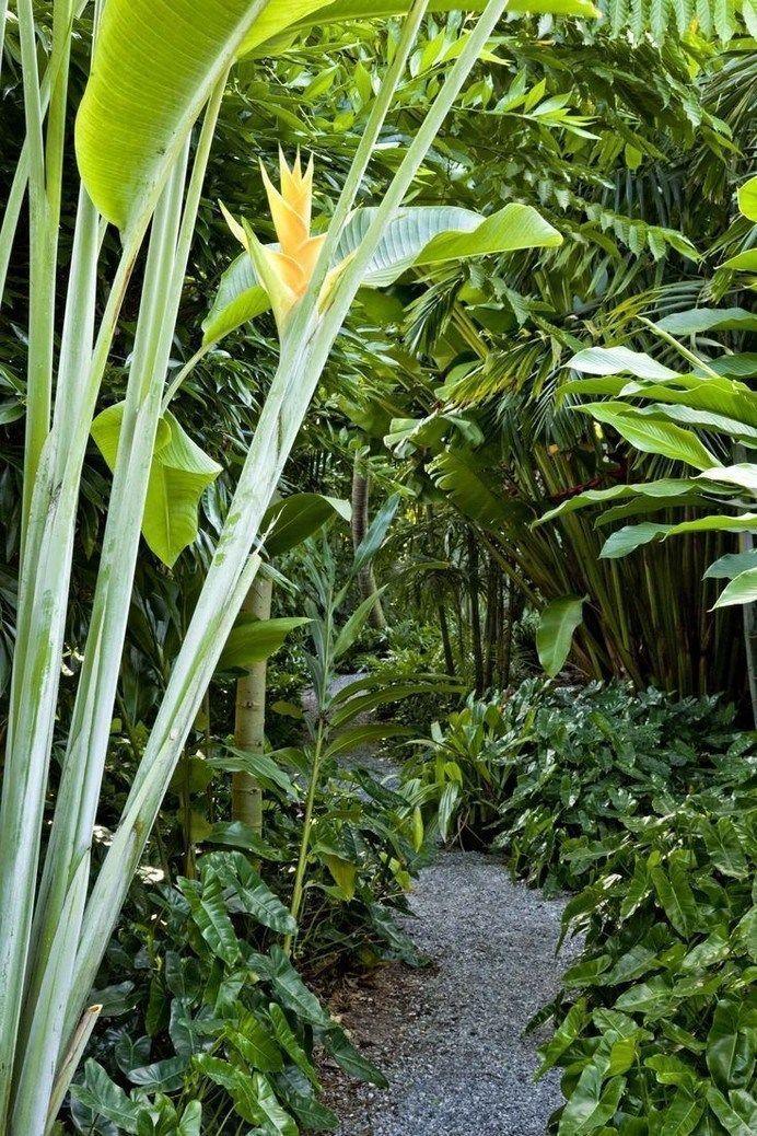 ✔ 25+ best tropical garden design ideas 00017 ~ Ideas for House Renovations,  ...#design #garden #house #ideas #renovations #tropical