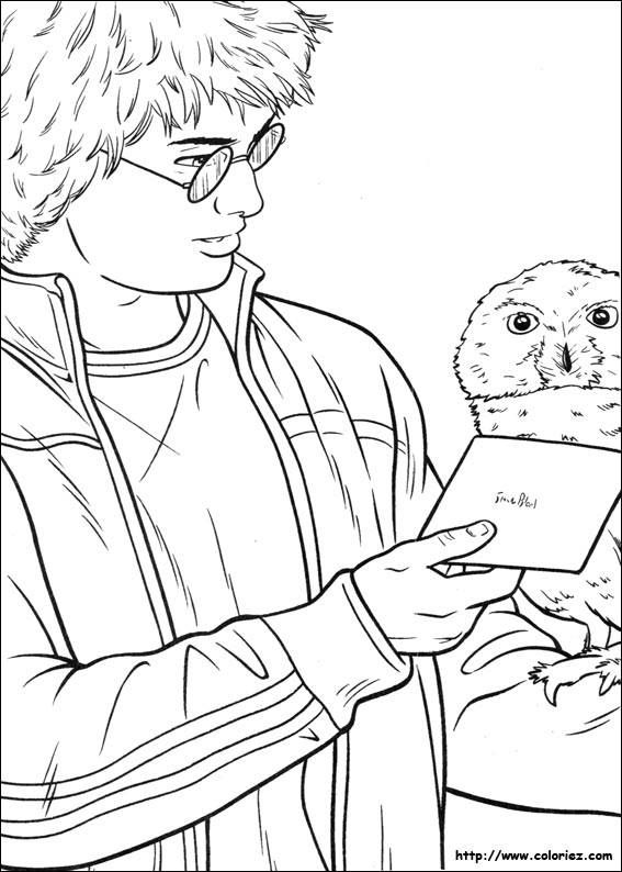 harry potter 3adult coloringcoloring bookcoloring for adultscoloring sheetstattoo ideasharry potter coloring pagessnowman treecolour book - Coloriage Harry Potter