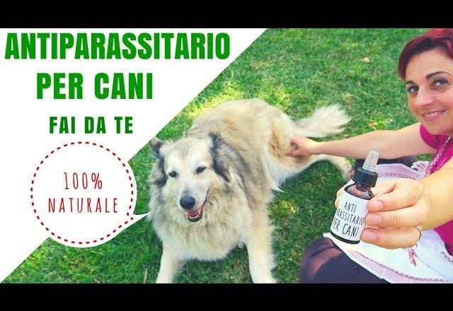ANTIPARASSITARIO PER CANI 100% NATURALE FAI DA TE