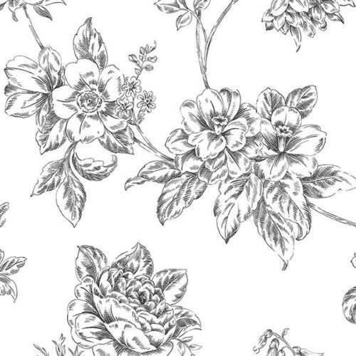 12 034 31cm Wallpaper SAMPLE Black And White Vintage Floral Norwall BW28706
