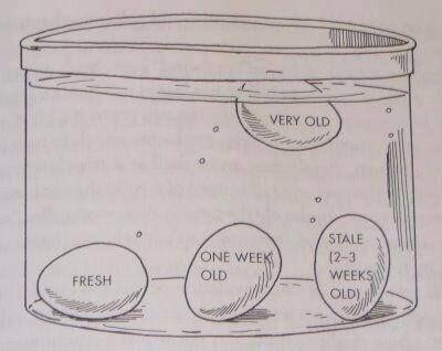 Egg Float Test Egg lays down = Good Egg stands up = Stale but OK Egg floats = BAD