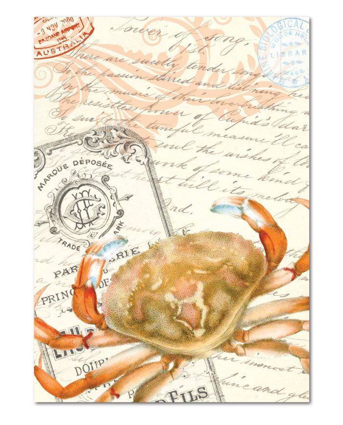 sagittarius crab astrology