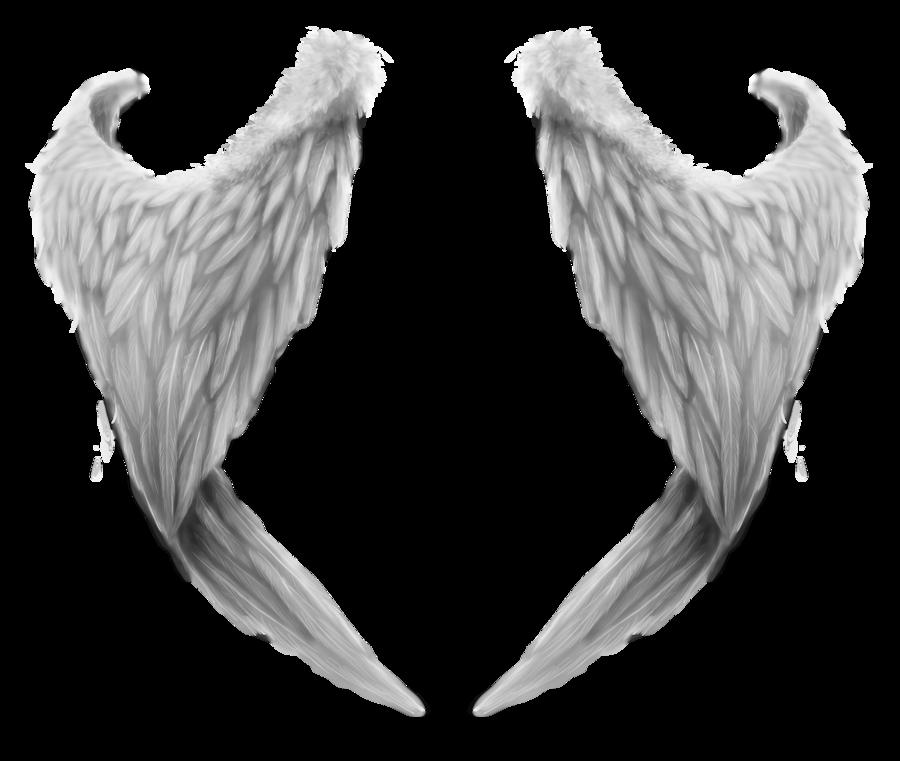 Картинки крылья ангела сложенные