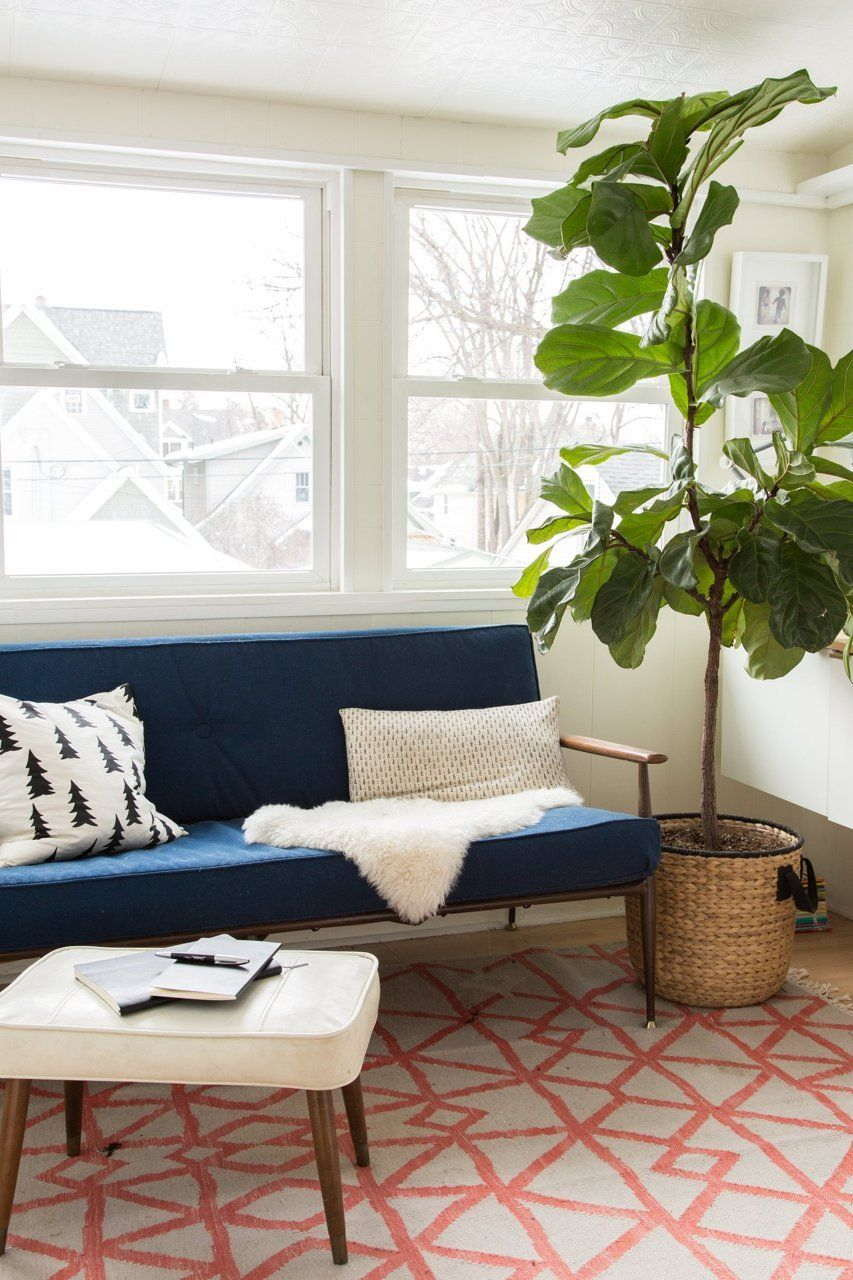 Chill Out Möbel A 106 Year Old Minneapolis House With Chill Scandinavian Vibes