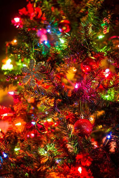 Christmas Tree Lights Traditional Vintage Colored
