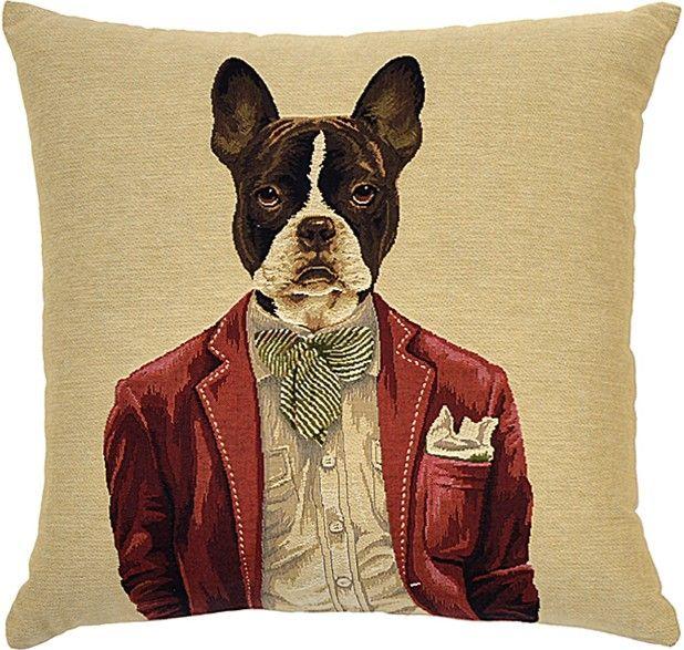 Dapper Dogs Cushion Flynn Dog cushions, Boston terrier, Dogs