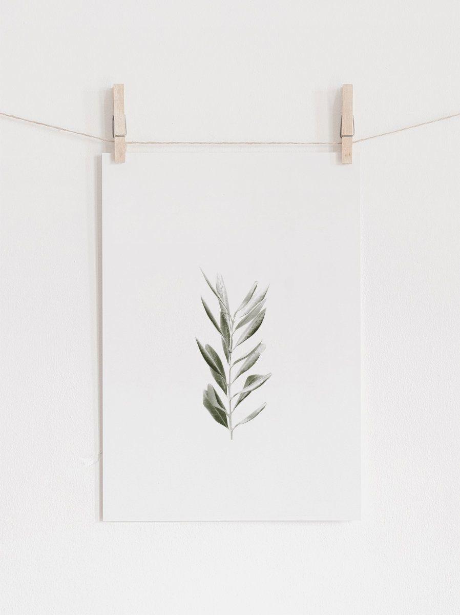 Botanical printolive printleaves wall artbotanical art print