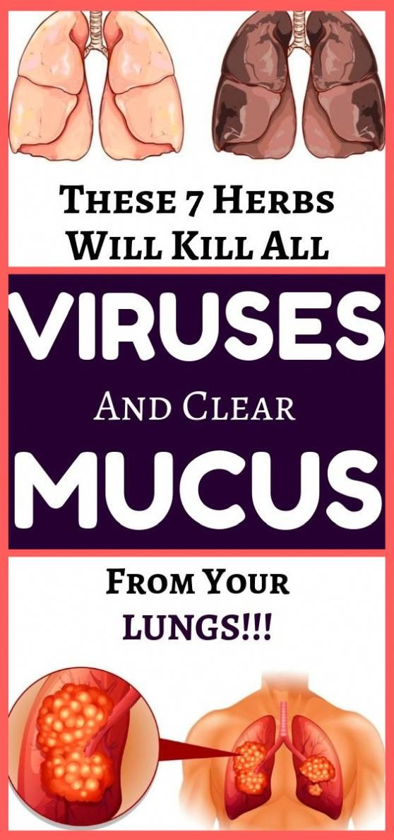 The real problem is, antibiotics can't and will not kill the viruses viruses, only…