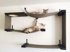Huisdieren - Etsy Huis & Wonen