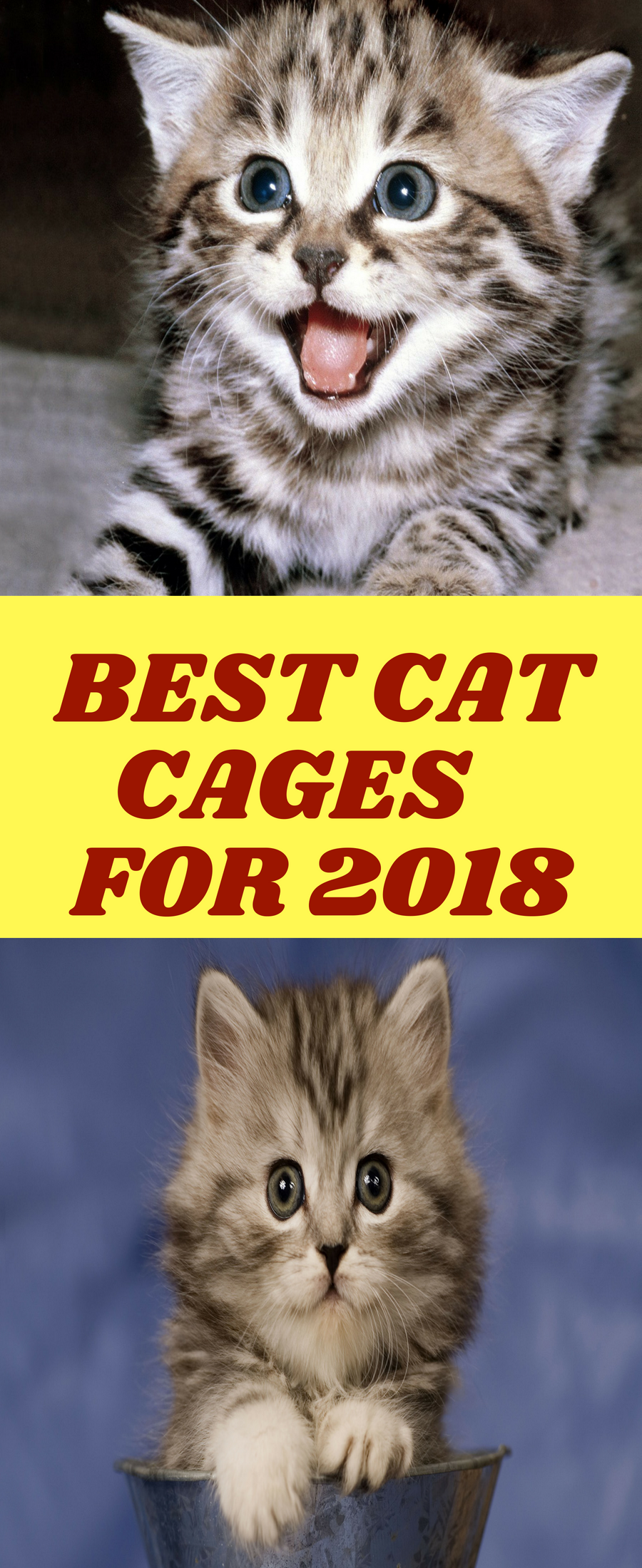 Top 10 Cat Cages In 2018 Best Pets Supplies Cat Cages Cats Raining Cats And Dogs