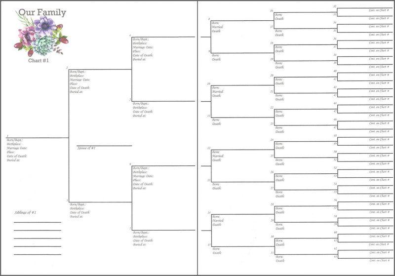 Family 6 X 8 6 Generations Pedigree Chart 1 Misc Me Compatible Family Tree Chart Pedigree Chart Free Family Tree