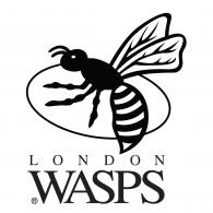 London Wasps Logo Vector Eps Download Seeklogo Vector Logo Wasp Eps