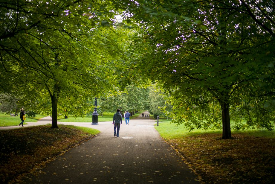 Feels Like Fall, Green Park, London