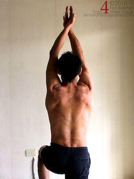 shoulder stretches  shoulder stretches shoulder