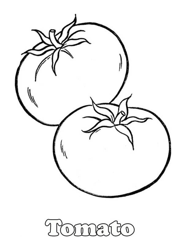 A Pair Of Red Tomatos Coloring Page Kids Play Color Fruit Coloring Pages Vegetable Coloring Pages Food Coloring Pages