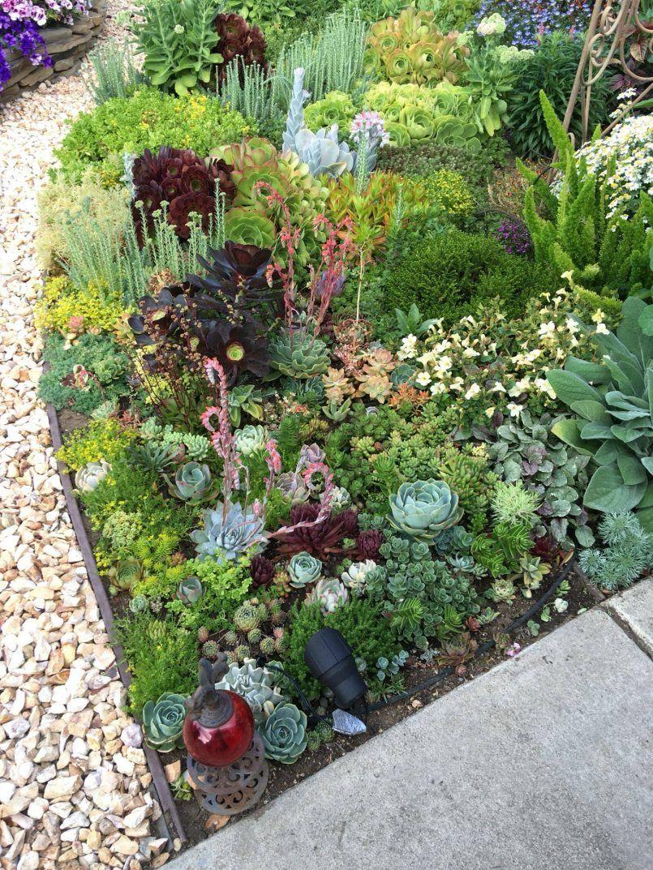 Garden Ideas Succulent Garden Front Yard Landscape Landscaping Scheme For Fabric By The Of Designs Best Design Way To Plant Succulen Sukkulenty Ogorod Landshaft