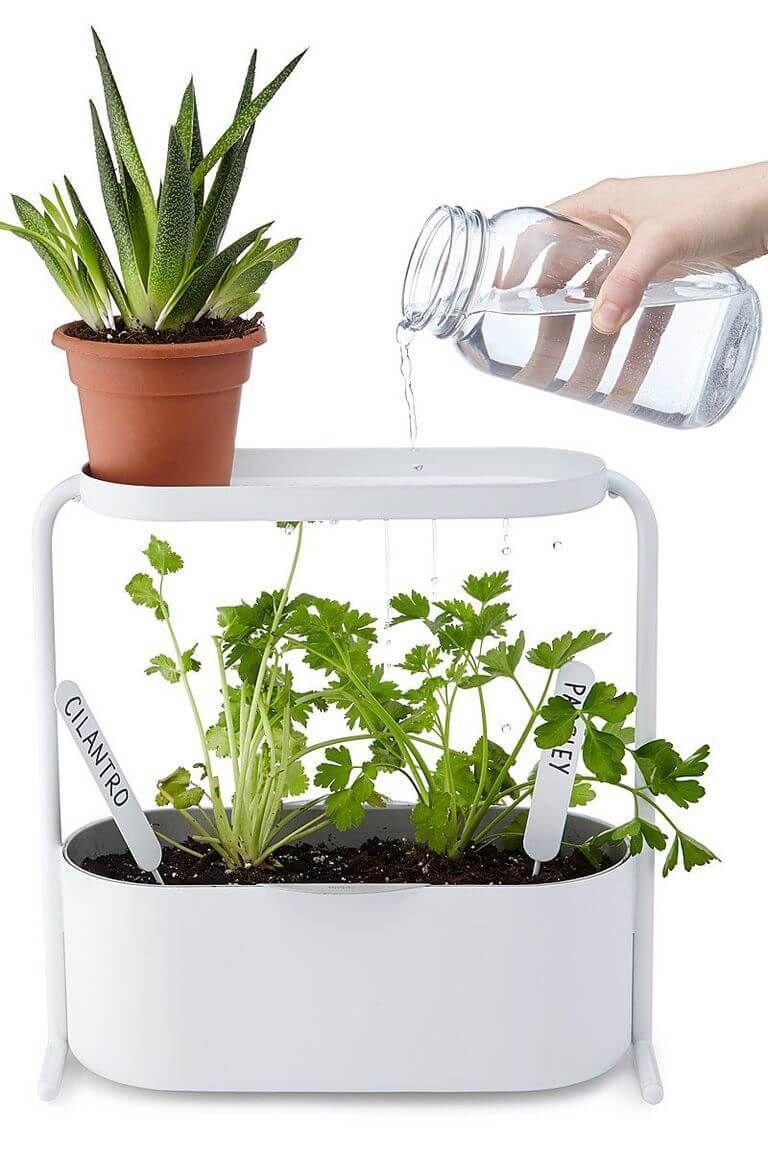 53 Creative Mini Indoor Garden Ideas Backyard Garden Landscape
