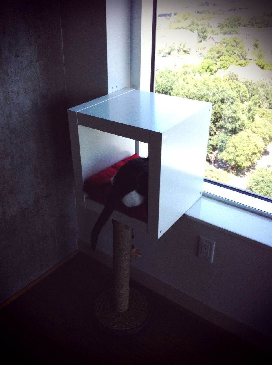Awesome IKEA hacks for crafty pet lovers Modern cat
