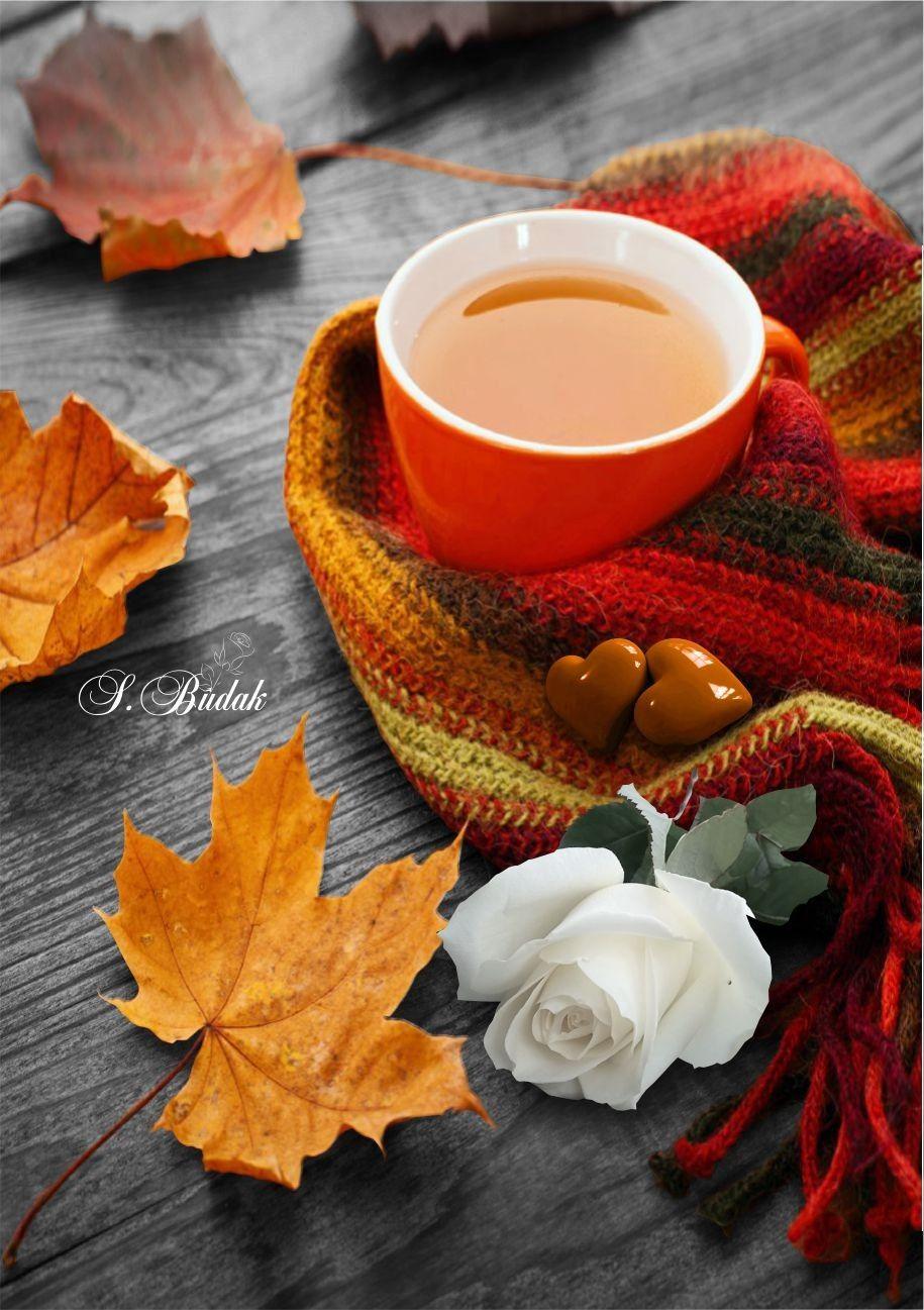 меня, доброе утро осенние картинки с кофе скороговоркой канцелярита приглушенного
