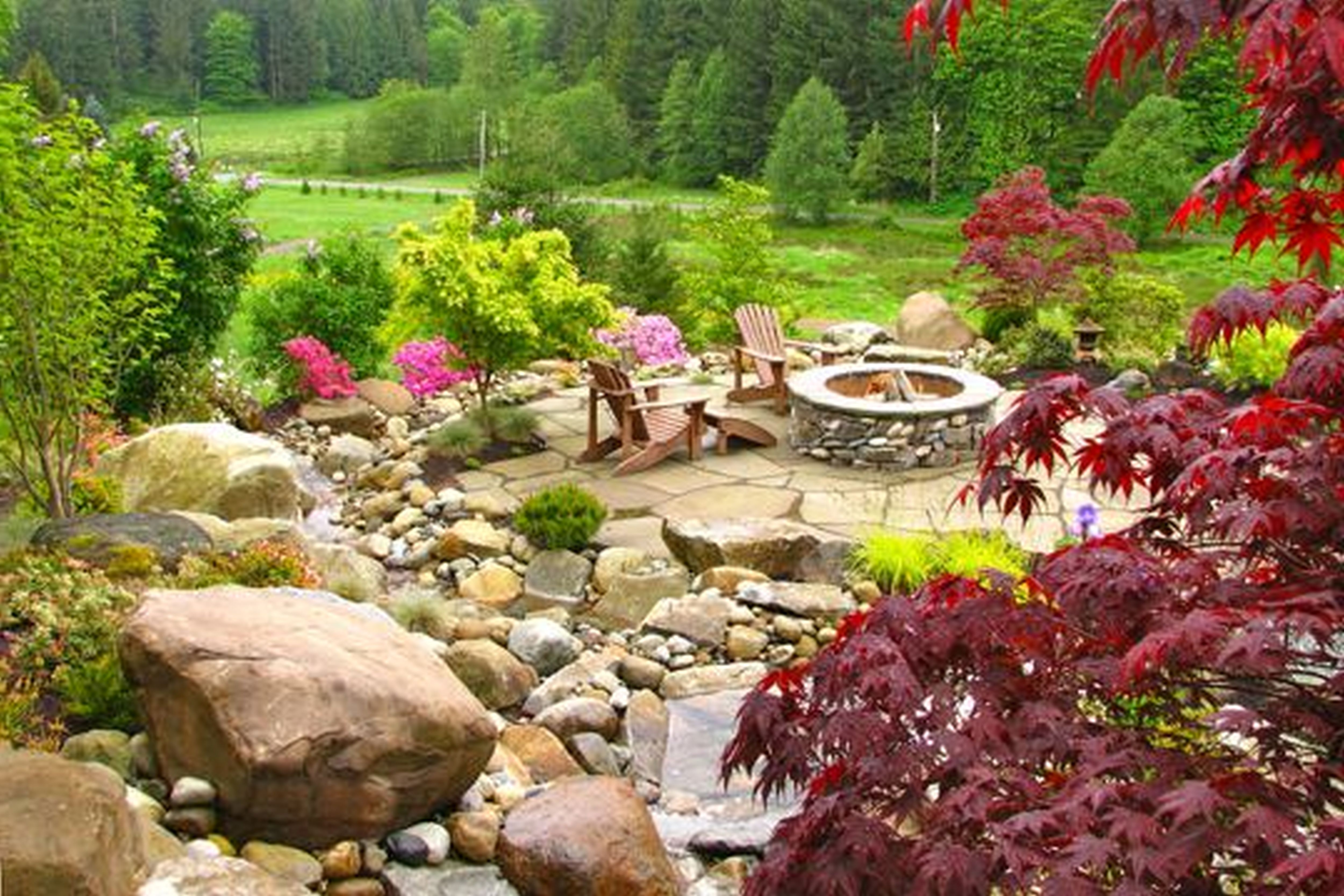 maple tree evergreens lots of textures rocks firepit  For the