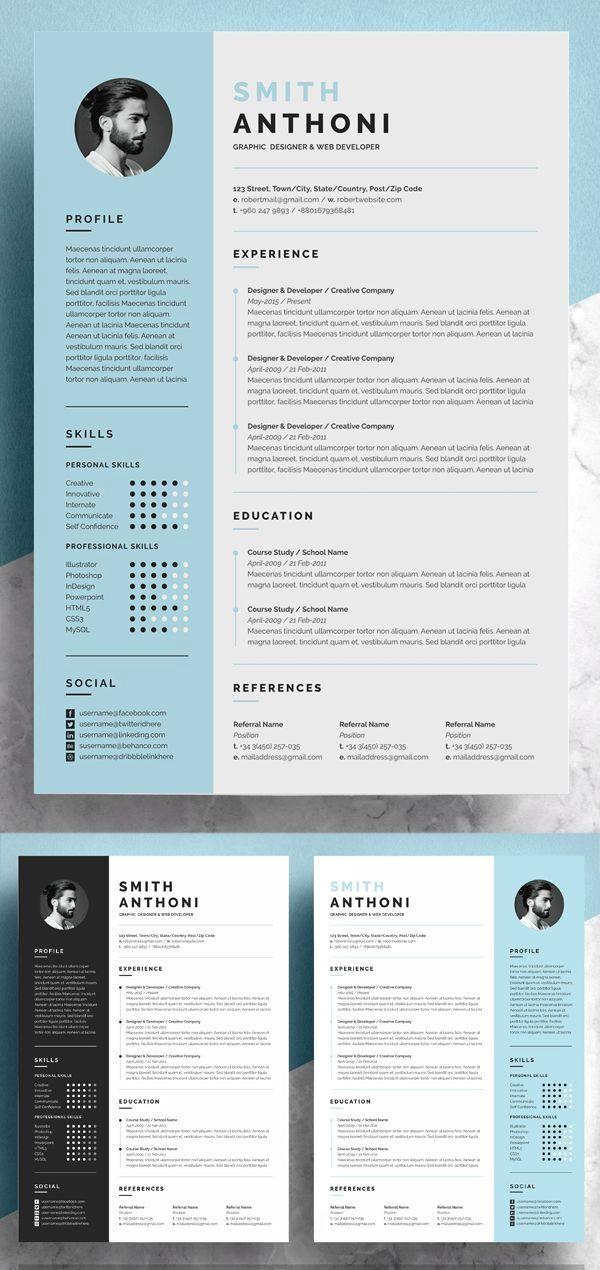 25 Best Free Resume Templates in 2020 Functional resume