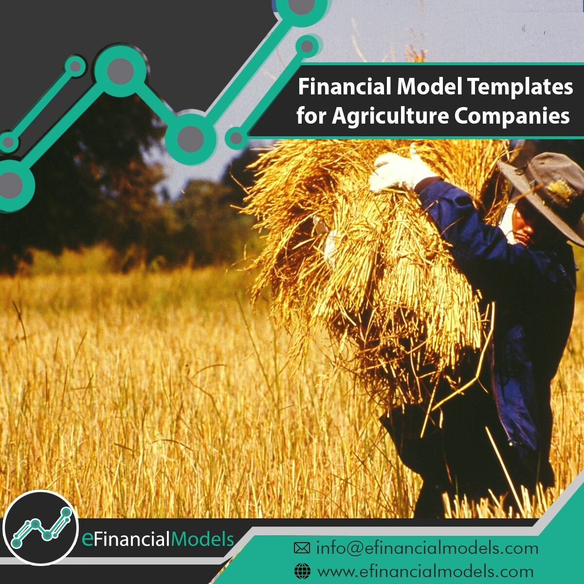 Financial model templates for agriculture companies for Financial modelling templates