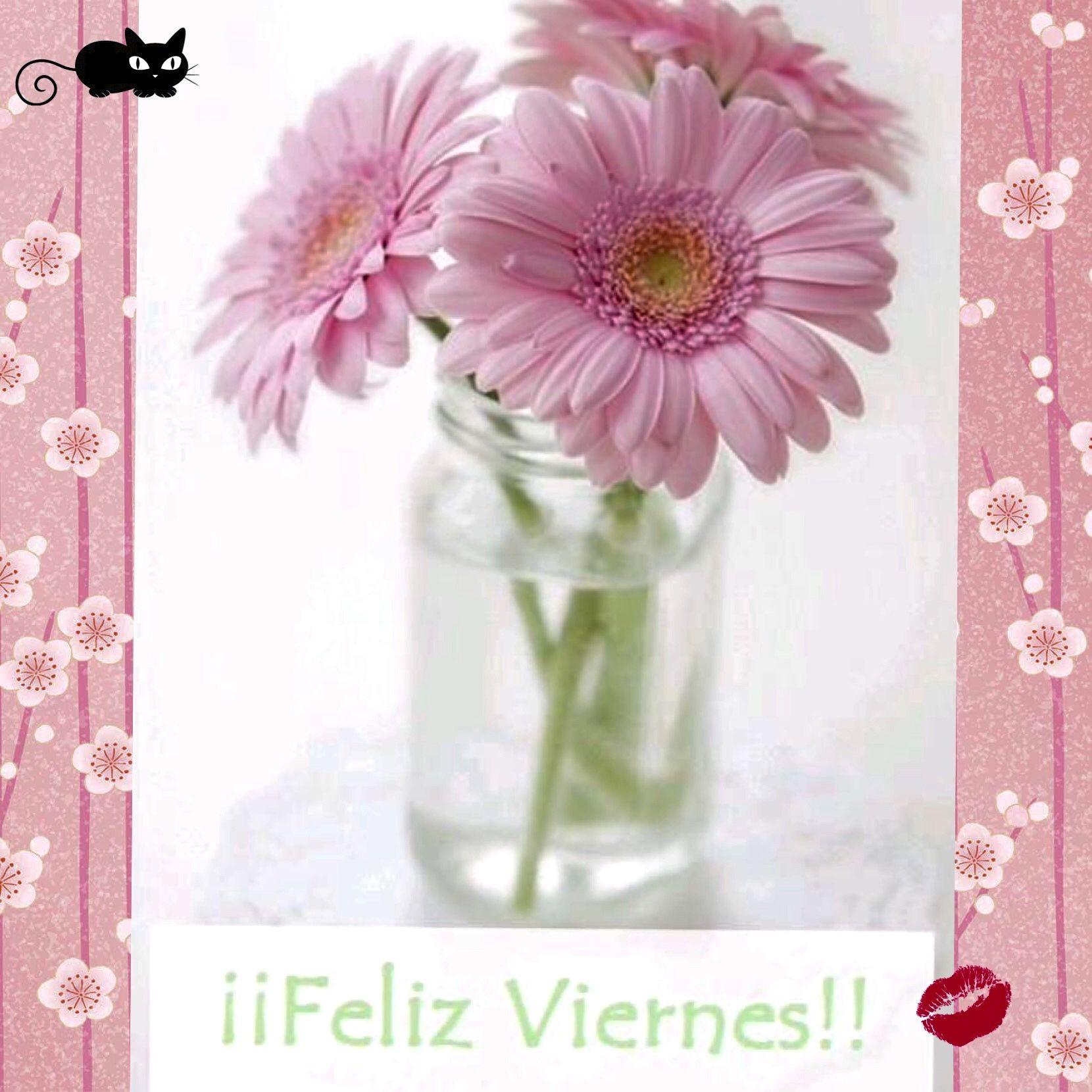 #FelizViernes‼️❤️