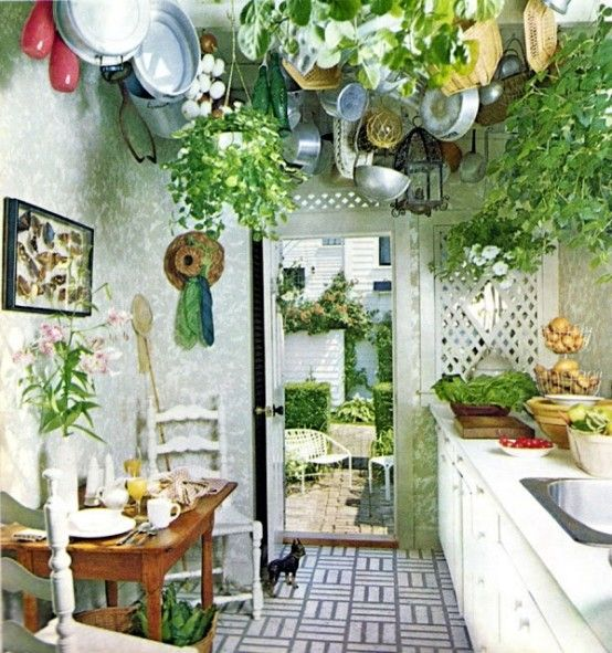 natural bohemian kitchen design with green plant and tree