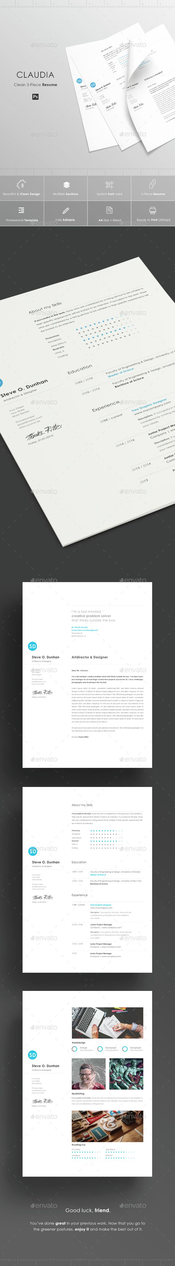 Buy make it simple resume